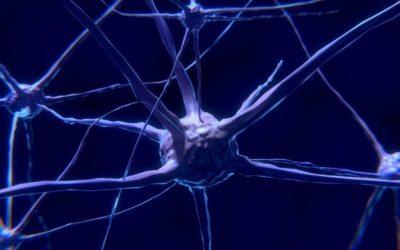 Gehirndoping: Effizienter denken, lernen und glücklicher werden