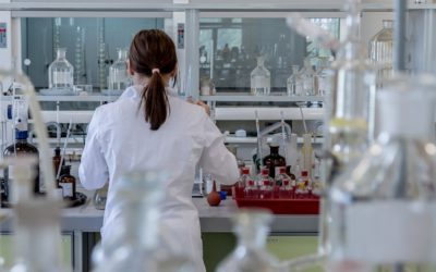 Nährstoffmängel: Sinnvolle Laboruntersuchungen